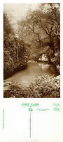 1930's CHEE DALE (MILLERS DALE) Nr BUXTON DERBYSHIRE UNUSED POSTCARD