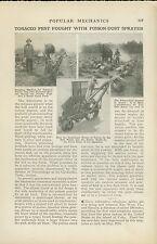 1921 Magazine Article Poison Sprayer to Fight Tobacco Hornworm Clarksburg Tn