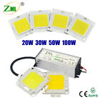 LED COB Chip + Power Supply Driver 100W 50W 30W 20W 10W SMD For Flood Light Bulb