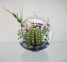 "Hanging Candle Holder Air Plant Terrarium Ornament 5"" W 6"" H US Seller! HCH0105"