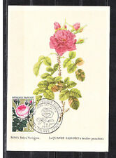 carte   1er jour  floralie  rose 30c  Vertolaye      1962