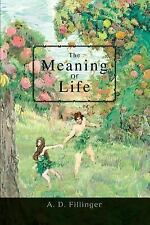 The Meaning of Life by A. D. Fillinger (2007, Paperback)