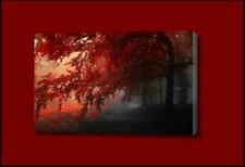 Framed Landscape Art Prints