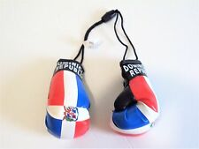 Dominican Republic Boxing Gloves Large Car Mirror Hanger Flag DR Rep Caribbean