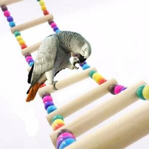Natural Wood Birds Pets Parrots Ladders Climbing Toy Hanging Colorful Ball UK