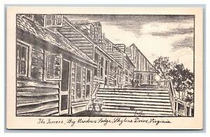 Skyline Drive, VA Virginia, The Terrace, Big Meadows Lodge, Linen Postcard