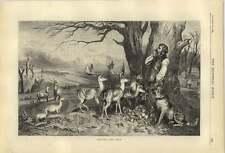1874 Estate Manager Feeding The Deer