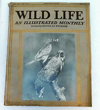 Wild Life animal magazine Douglas English May 1913 Cuckoo gannet mole birds