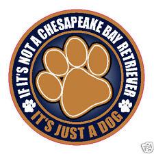 "Not A Chesapeake Bay Retriever Just A Dog 5"" Sticker"