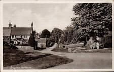 Boughton near Kingsthorpe. Tree & Bench.