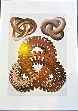 M C. Escher Knots Colorful Copper Red Rings with Rings 16x11  12x 8 1/2