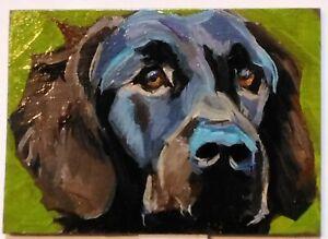 ACEO original oil painting Dog CHOCALATE LABRADOR RETRIEVER canine fine art ATC