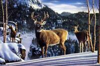 "Kim Norlien ""Morning View"" Deer Buck Print  10 x 7"