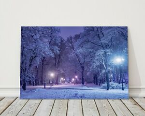 winter scene late at night path covered in snow canvas picture print