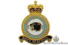Queens Crown: Royal Air Force 1 Group Headquarters Squadron Unit RAF Lapel Badge