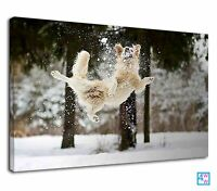 Happy Dog Playing In The Snow For Kids Bedroom Canvas Print Wall Art Picture