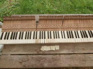 88 Piano Keys on Frame from 1933 John Broadwood Piano Spares / Upcycling B&W