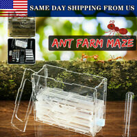 3D Ant Farm Maze Earth Nest Formicarium Housing DIY Ant Farm House Display Box