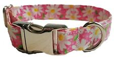 Metal Buckle Pink Daisy Dog Collar chrome Hardware puppy Summer Flowers white