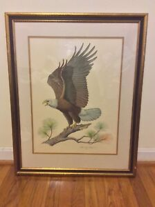 The American Bald Eagle By Albert Earl Gilbert 1976 Signed Frame Engraving W COA