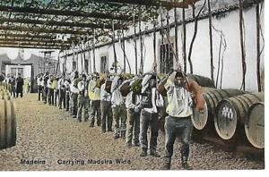 MADEIRA Vintage Colour Postcard Carrying Madeira Wine