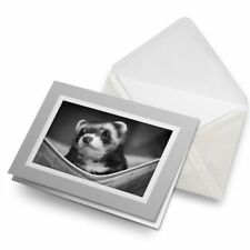 Greetings Card (Grey) Bw - Ferret Hammock Pet Rodent Animal #37246