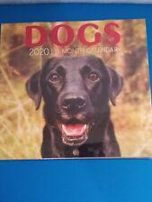 Cute Dogs 2020/16 Month Calendar (5.6 in x 5.3 in)