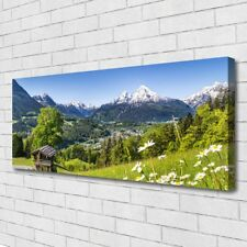 Leinwand-Bilder Wandbild Canvas Kunstdruck 125x50 Gebirge Felder Natur