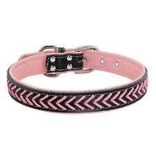 Braided Leather Dog Collar Quality Soft Padded Heavy Duty Buckle Free Shipping
