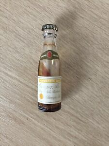 Miniature Schweppes Dry Ginger Ale