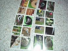 20 Bilder Sammelsticker EDEKA Unser Wald unbenutzt