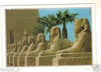 Immagine Educativo - Egitto - Karnak- Allée Dei Sfinge (H6058)