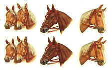"Ceramic Decals Horse Heads Animal (B) 1.75"" to 2"" 3 Designs"