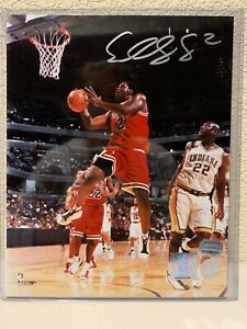 Eddy Curry Signed Chicago Bulls 8x10 Photo Mounted Memories
