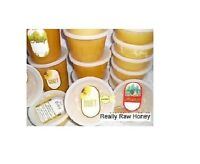 Grade B Darker Really Raw Honey,  Naturally Crystallized FREE SHIPPING! Multy