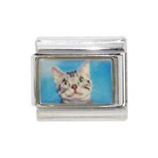 Tabby Cat photo Italian charm - fits 9mm classic Italian charm bracelets