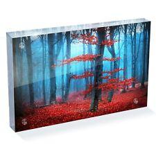 "Forest Tree Leaves Autumn Photo Block 6 x 4"" - Desk Art Office Gift #13007"