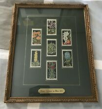 Antique Wills Cigarettes Trading Cards Flower Culture in Pots 1925 Framed