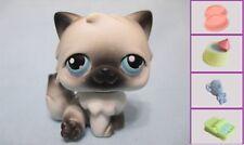 Littlest Pet Shop #60 Gray Black Persian Cat +1 FREE Access 100% Authentic