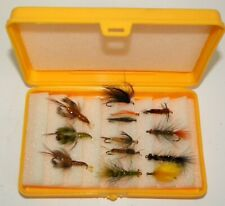 Plastic Box with 13 Large Flies