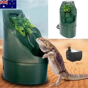 Lizard Drinker Simulation Plant Waterfall Reptile Landscape Water Feeder W/Pump