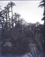 Maghreb Marocco Algeria Tunisia, Negativo Foto Stereo Placca Lente VR10L4n6