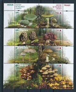 [G10967] Poland 2012 Mushroom good sheet very fine MNH