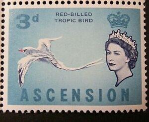ASCENSION 1963 SG73 3d. RED BILLED TROPIC BIRD  -  MNH