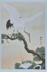 OHARA KOSON SHOSON: 'TSURU' CRANE & NEST - Art Print of Japanese Woodblock Print