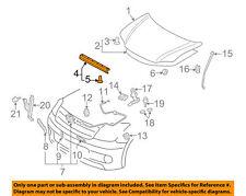 NIP OEM 2005-2010 Toyota Scion tC Hood Front Seal Gasket 5338120180