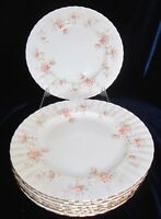 Royal Albert Peach Rose Bone China Bread & Butter Plates - Set of 8 - England