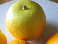 7 Pieces Citrus Artificial Faux Fake Fruit Staging Display Decor