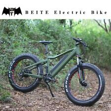 Fat tyre electric bike 750w