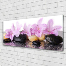 Acrylglasbilder Wandbilder aus Plexiglas® 125x50 Blumen Steine Pflanzen